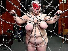 29-Feb-2020 Udders caught in a web of pain